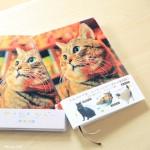 ぽちゃ猫ワンダー手帳が可愛いすぎてやばいのだ